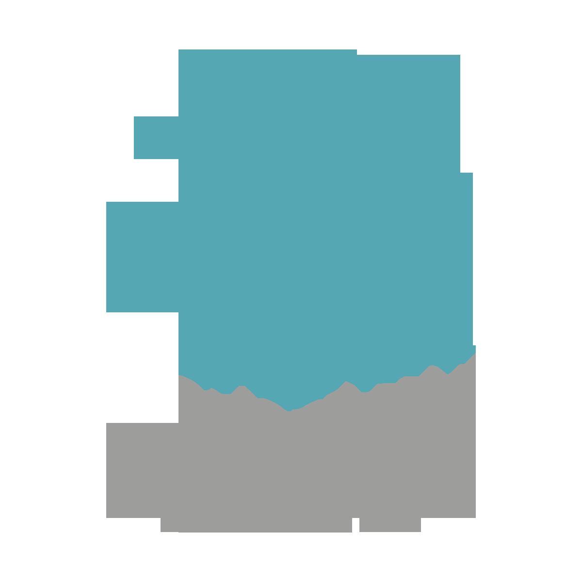 kromoszomakarneval_logo+
